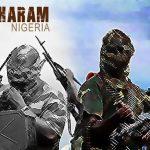Rentetan Aksi Militan Boko Haram yang Menggangu Keamanan Nigeria